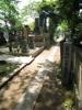 長谷川一夫の墓